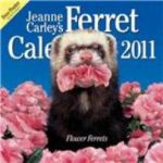 Jeanne Carley's Flower Ferrets, 2011 Coming Soon!